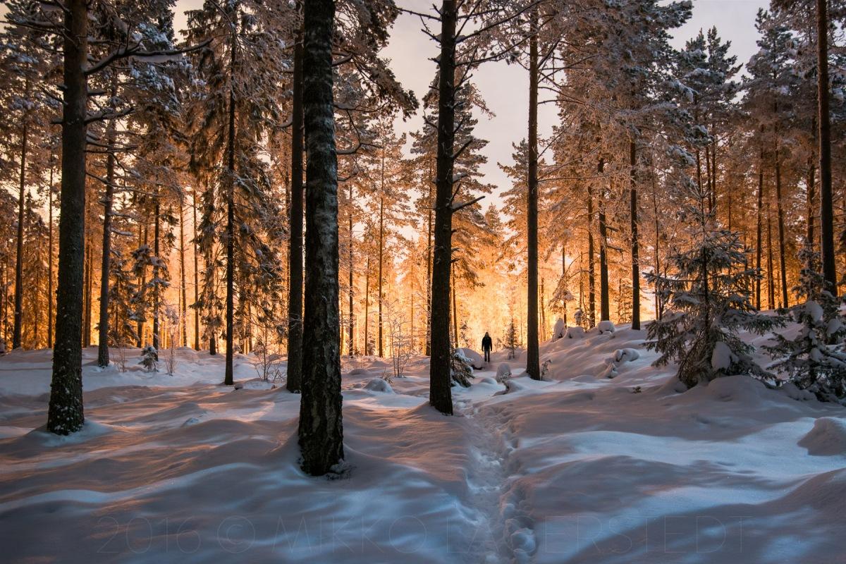 Finlandiya'ya Gitmeden Önce Bilmeniz Gerekenler